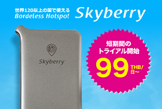 Skyberryレンタル優待